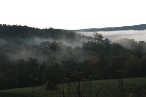 Mist in the Kickapoo Valley